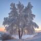 Andrey_66666
