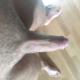 cockfun_96