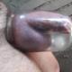 ignatuhka