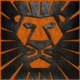 lions666