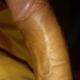 Sandykumar981390