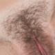 Sexitator