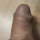 Wolf987u