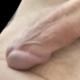 Ilpolipone2