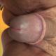 Bufa415
