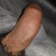 shyboy95