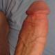 gbbxl69