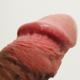 angelfck20