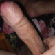 BearBoy554