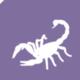 PMFG5Scorpion