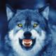 sadistdaddywolf