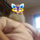 chubbybear79