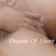 dreamsofsheen