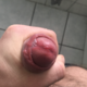 bakus1