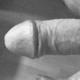 hosenknopf
