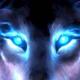lonewolf415