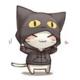 Indy_cat