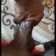 Sakai21