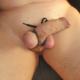 submissus
