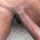 Akcxyz2021