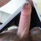 beartop91