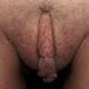 dauergeile_pussy