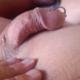 chagoi3158