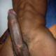 Blackdick213947