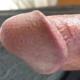 zebtounsi69