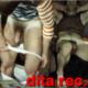 dita_recife