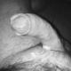 ne_east_guy
