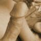 sexer80