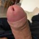 Bastardino