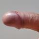 Sniffer_84