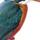 kingfisher8123