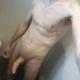 orgasm_p