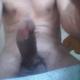 kamov83