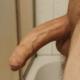 BiHarz89