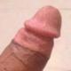 Shahzad733