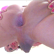 sissies_love_BBC