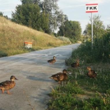 FKKlobau