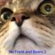 NoFrankandBeans2