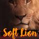Softlion