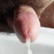 JoelMike571