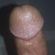 DrPanda428