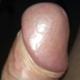 pinkhorn