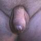 bigeilerbock