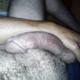 hornyzip