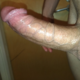 andres jacielsw86 Pulpo
