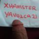 yavuzca21